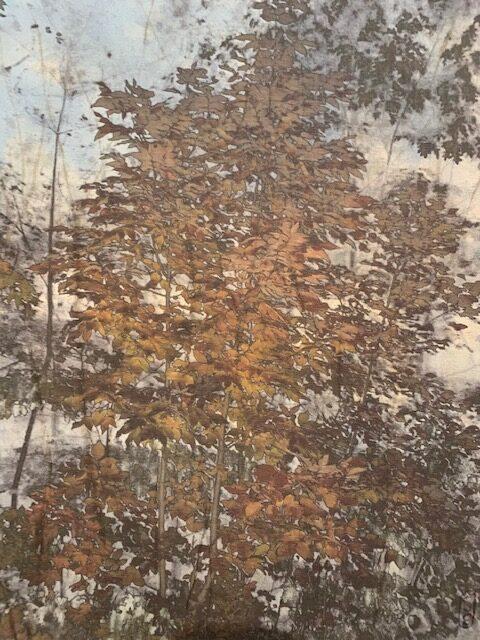 Arts-Sutton - France McNeil
